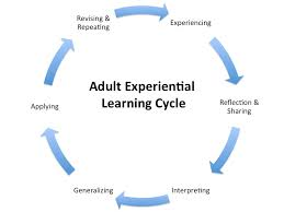 Learning Theories Andragogy And Instructional Design Reimagining Education